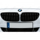51712151895 - Grila fata stanga M Performance - BMW Seria 3 E90, E91 - non face-lift | Original BMW